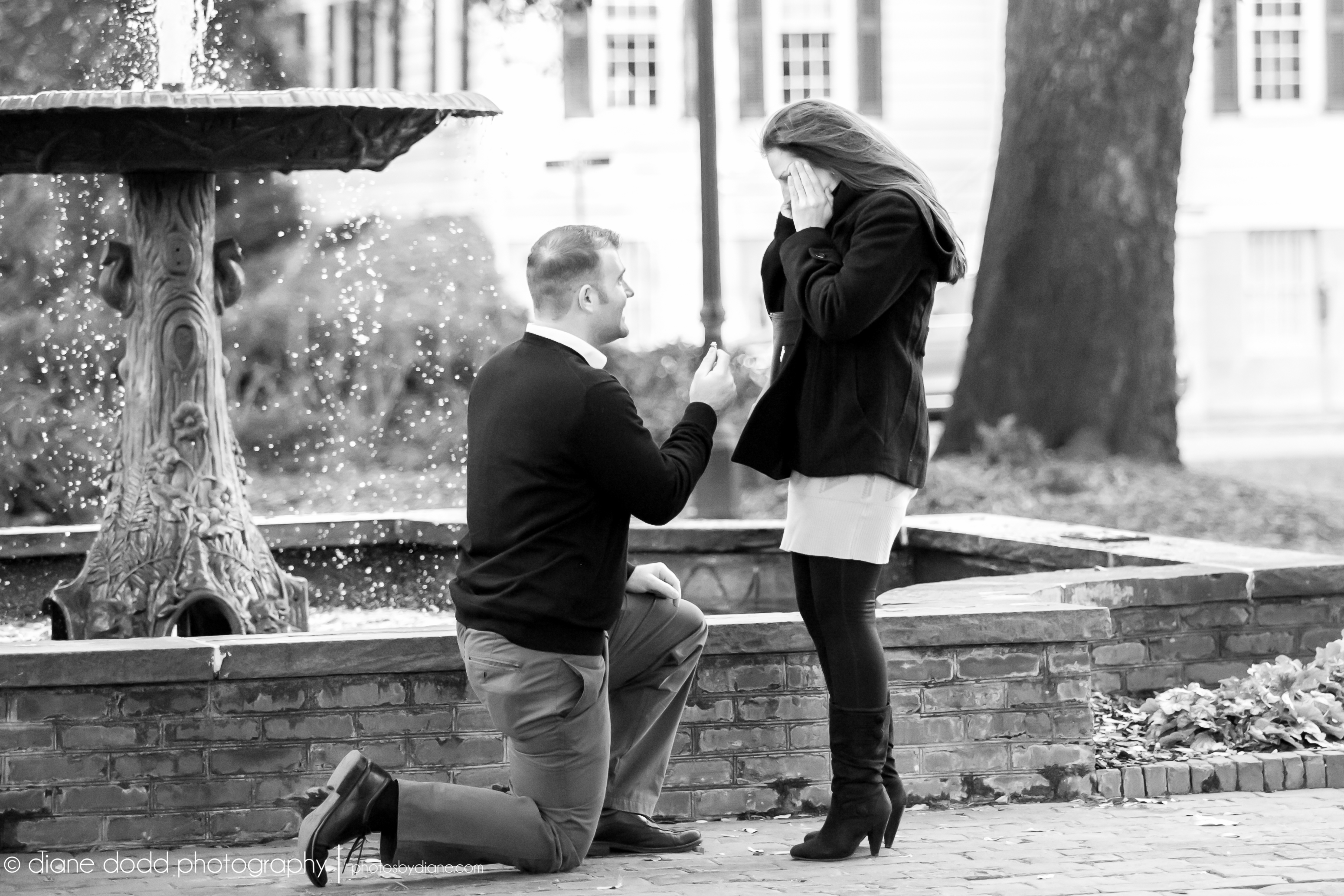 Raves Near Me >> Marriage Proposal in Columbia Square