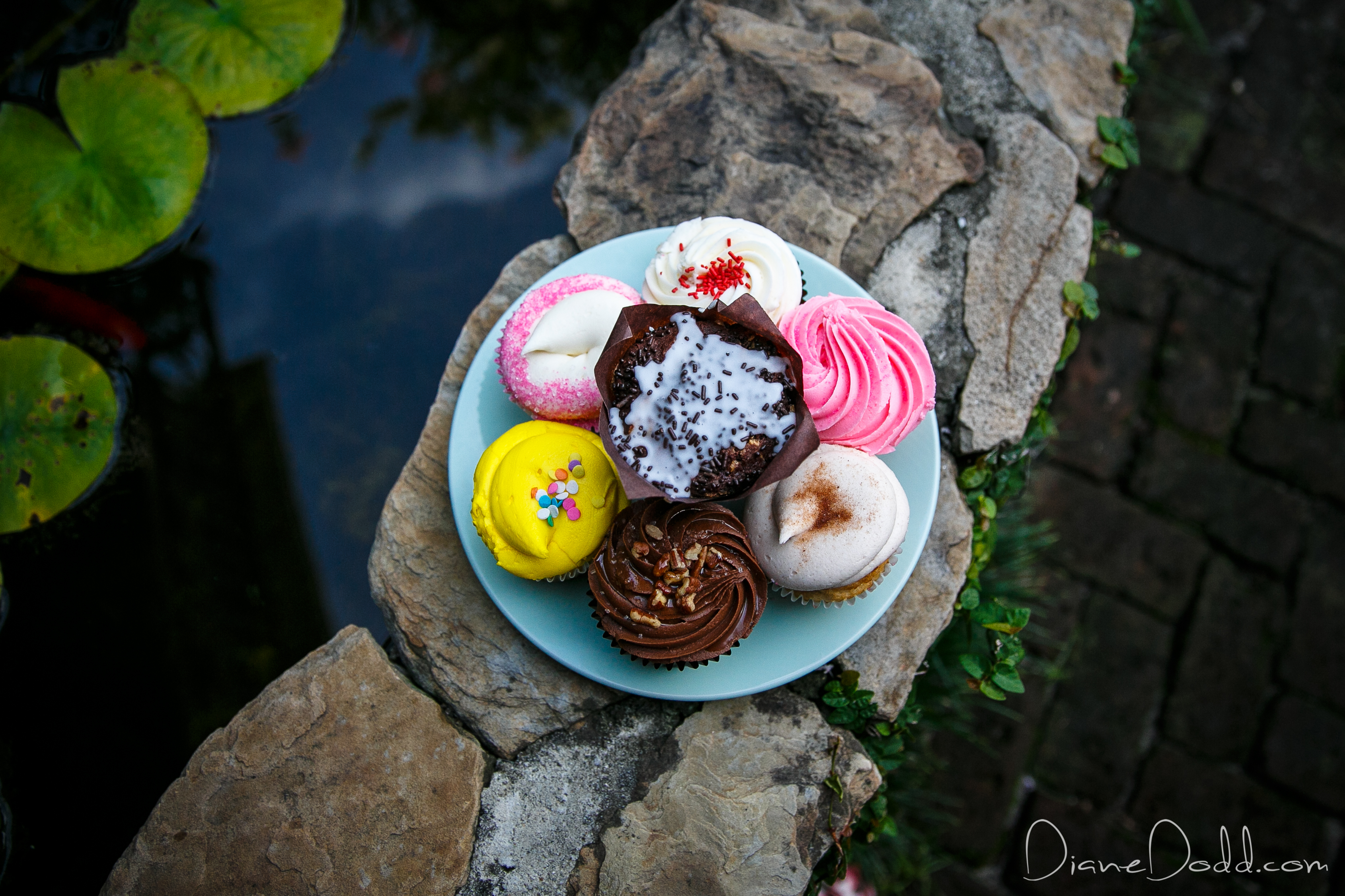 elopement cupcakes